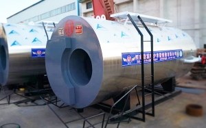 立式生物质锅炉发往新疆