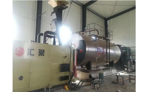 WNS生物质内燃锅炉