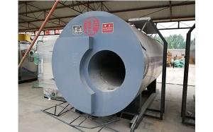 生物质燃气蒸汽锅炉