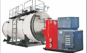 WNS生物质燃气蒸汽锅炉